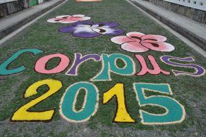 Alfombras florais 2015
